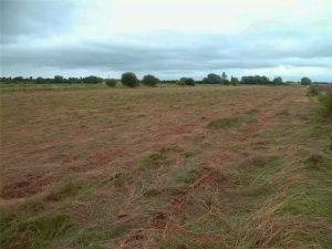 Earlake Moor Land
